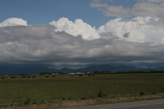 13.06.2011 - Washington State Landscape