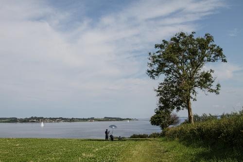 Summer, Sun, Flensborg Fjord